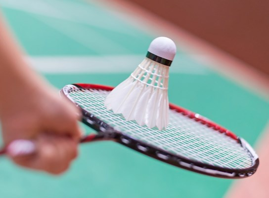 Badminton clubs